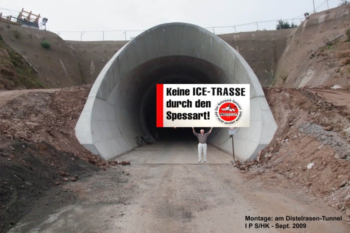 MontageDistelrasenTunnel, Copyright by IPS